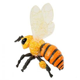 Insect Lore Honey Bee  Life Cycle Stages